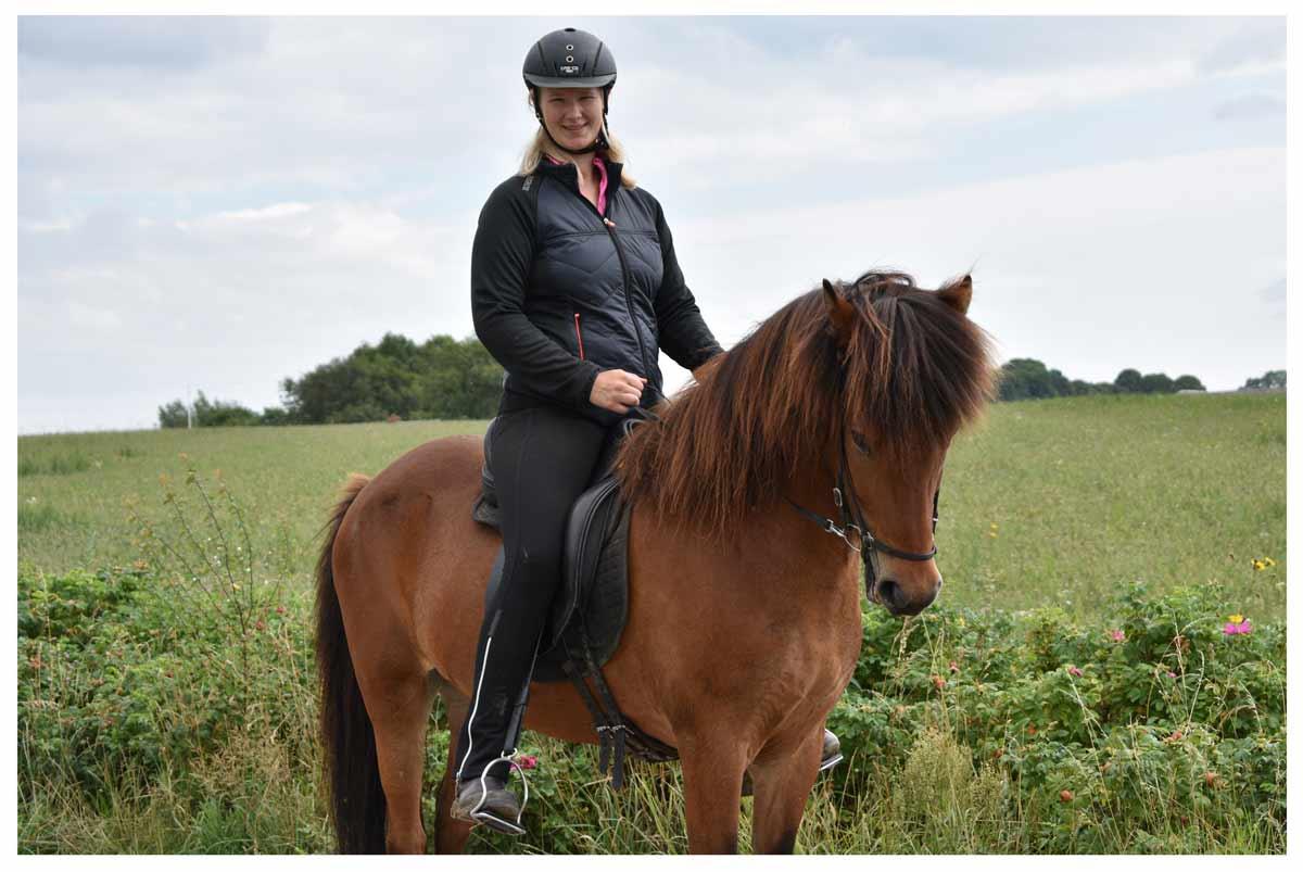 undervisning på islandske heste